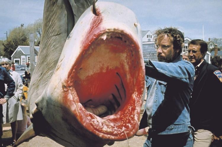jaws movie matt hooper richard dreyfuss denim shark