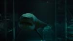 bait movie great white shark underwaterwolfmanlivesbait 3d movie poster sharksbait movie great white shark underwaterbait 3d movie supermarket floodedone quarter moonEnhanced by Zemanta