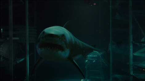 bait movie great white shark underwater