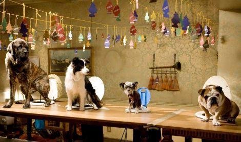 hotel for dogs lenny shep romero cooper