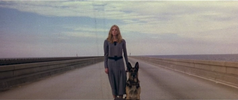 lucio fulci beyond bridge dog