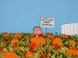 it's the great pumpkin, charlie brown linus sign