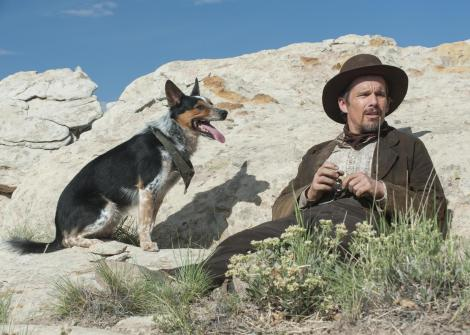 in-a-valley-of-violence-movie-2016-jumpy-dog-ethan-hawke