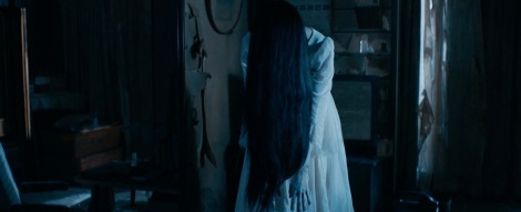 sadako-vs-kayako-the-ring-the-grudge-long-hair-ghost